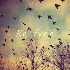 Be free, dream big.