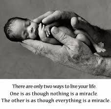 There are two ways to live your life. One is as though nothing is a miracle. The other is as though everything is a miracle