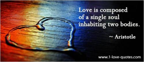 Love is composed of a single soul inhabiting two bodies. -