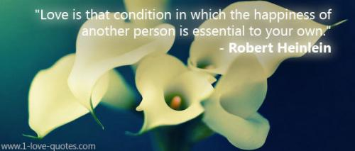 Love is that condition in which the happiness of another person is essential to your own. -