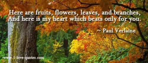Here are fruits, flowers, leaves, and branches, And here is my heart which beats only for you.