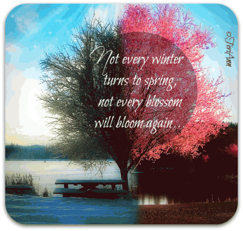 Not every winter turns to spring,