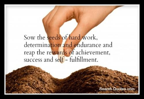 Sow the seeds of hard work, determination and endurance and reap the rewards of achievement, success and self  fulfilment.