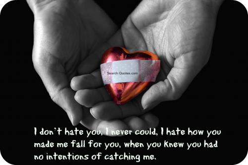 I dont hate you, I never could, I hate how you made me fall for you, when you knew you had no intentions of catching me.