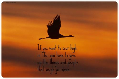 If you want to soar high in life, you have to give up the things and people that weigh you down.