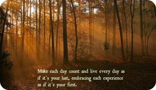 Make Your Day Count Quotes: Make Each Day Count And Live Every Day As If Its Your Last