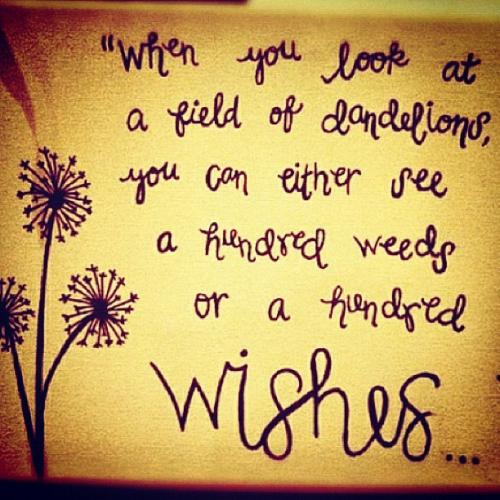 When you look at a field of dandelions you can either see a hundred weeds or a hundred wishes.