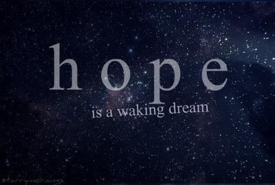 Hope is a waking Dream .