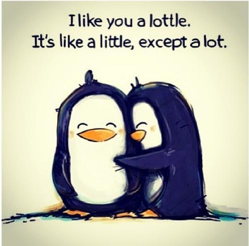 I like you a lottle, it's like a little, except a lot