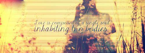 LOVE is composed of SINGLE SOUL,inhabiting two BODIES....