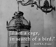 I am a cage in search of bird.