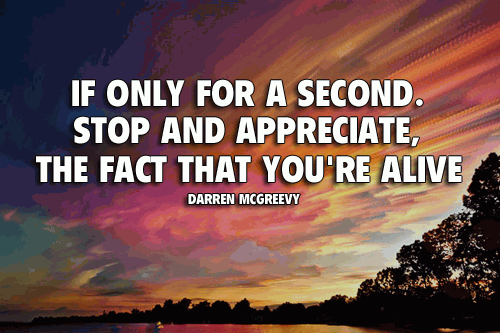 If only for a second, stop and appreciate the fact that you're alive.