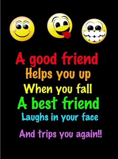 A good friend helps you when you fall. A Best Friends laughs in your face and trips you again!