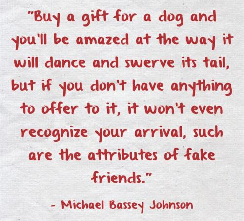 Buy a gift for a dog, and you'll be amazed at the way it will dance and swerve its tail, but if you don't have anything to offer to it, it won't even recognize your arrival, such are the attributes of fake friends.