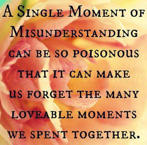 A single moment of misunderstanding can be so poisonous,   That it can make us forget the many lovable moments we spent together...