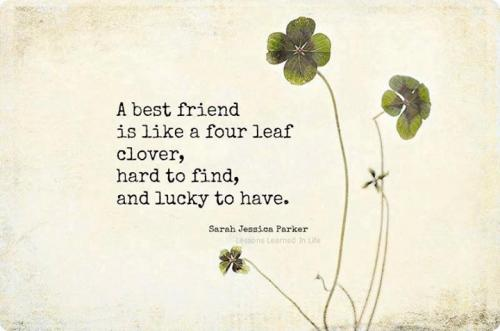 A best friend is like a four leaf clover, hard to find,  and lucky to have...