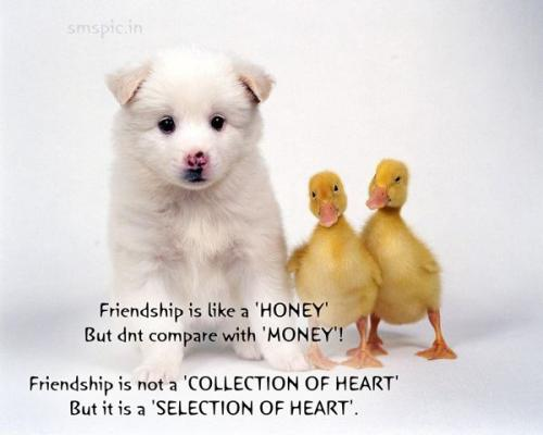 Friendship is like a 'HONEY' But don't compare with 'MONEY'!