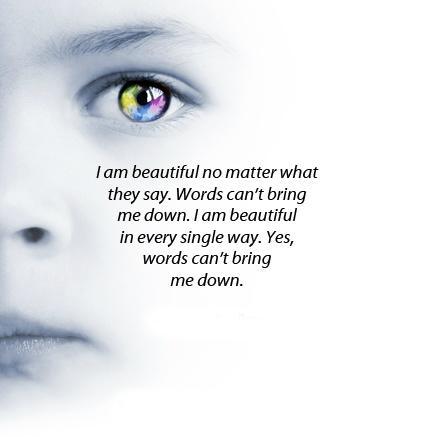 Words Do Not Define Beauty People Do Not Define Beauty