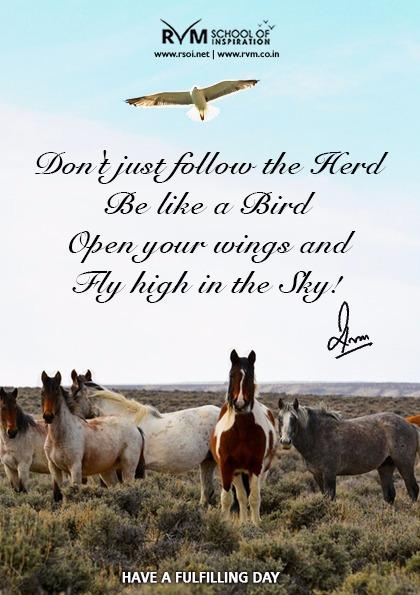 Don't just follow the Herd. Be like a Bird. Open your wings and Fly high in the Sky!