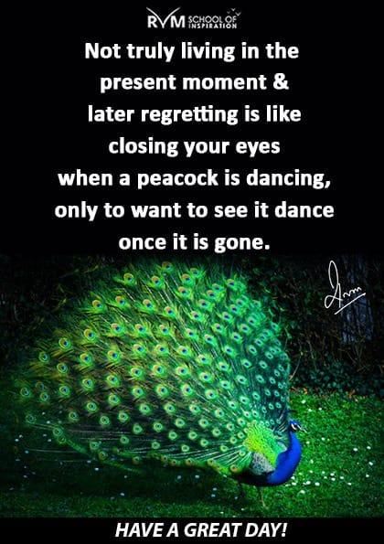 Not truly living in the present moment & later regretting is like closing your eyes when a peacock is dancing, only to want to see it dance once it is gone.
