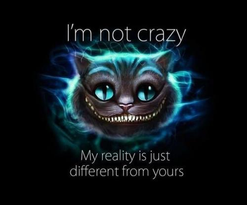 I'm not crazy. My reality is just different from yours.