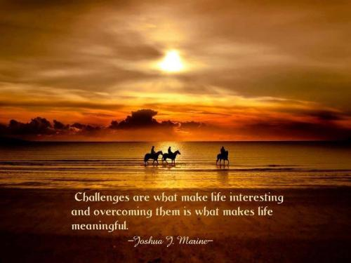 Challenges are what makes life interesting, and overcoming them is what makes life meaningful.