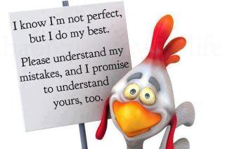 I know, I am not perfect, but I do my best.Please understand my mistakes, and I Promise to understand your's too...