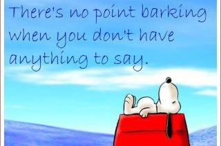 There's no point barking when you don't have anything to say...