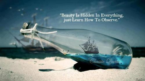 Beauty is hidden in everything, just learn how to observe.