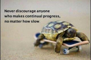 Never discourage anyone who makes continual progress, No matter how slow.