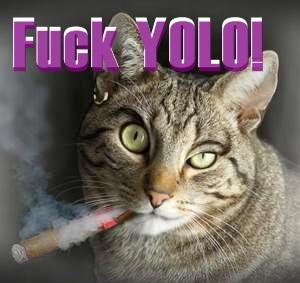 Fuck YOLO. -Cat