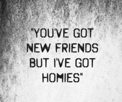 'you've got new friends,, but i've got homies'