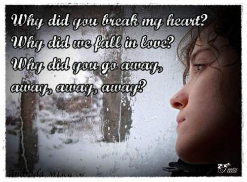 Why did you break my heart Why Did You Break My Heart Quotes