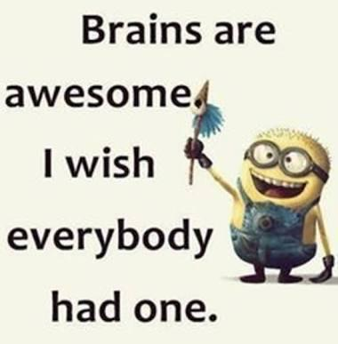 Brains are awesome I wish everybody had one! :p