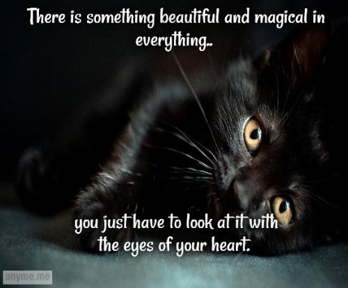 There is something beautiful and magical in everything.. you just have to look at it with the eyes of your heart.