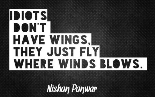 Idiots don't have wings, They just fly where winds blows.