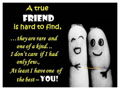 A True Friend is hard to find...they are rare and one of a kind...