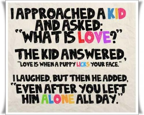 I approached a KID and asked: What is LOVE? the kid answered, Love is when a puppy LICKS your face. I laughed, but then he added, Even after you left him ALONE all day.