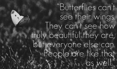 butterflies can't see their wings. they can't see how truely beautiful they are, but everyone else can. people are like that as well.
