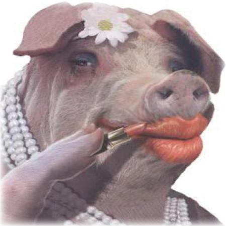 185708_20140317_105350_pig-lipstick.jpg