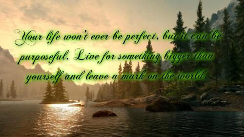 Your life won't ever be perfect, but it can be purposeful. Live for something bigger than yourself and leave a mark on the world.