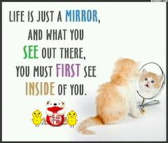 Life is just a mirror and what you see out there you must first see inside of you.