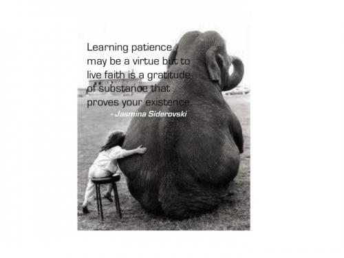 Learning patience may be a virtue but to live faith is a gratitude of substance that proves your existence.