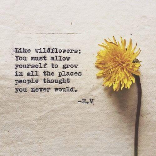 Like wildflowers; you must allow yourself to grow in all the places people never thought you would.