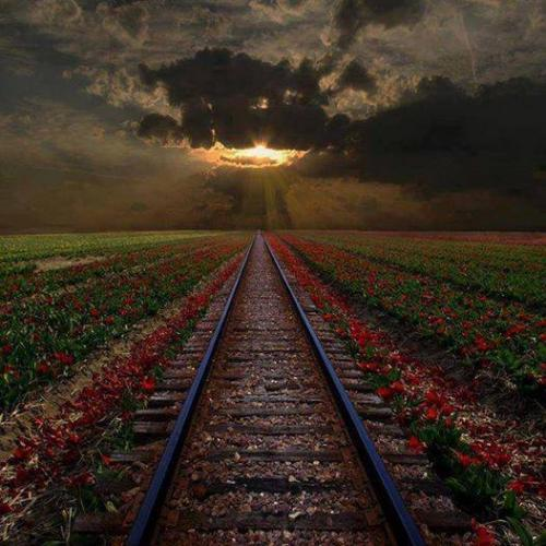 Life is like a train on rails. Can only go forward, right or left, cannot turn around.
