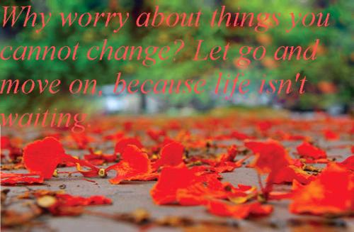 Why worry about things you cannot change?Have faith - Let go and move on, because life isn't waiting.