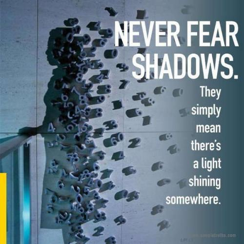 Fear is only as deep as the mind allows...Never fear shadows, they simply mean there's a light shinning somewhere.