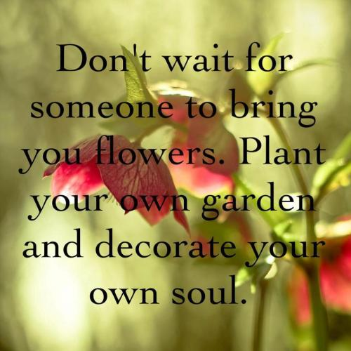 Don't Wait For Someone To Bring You Flowers; Plant Your Own Garden And Decorate Your Own Soul.