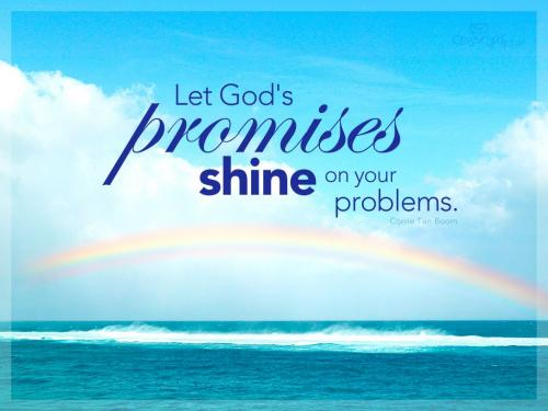 Trust in God in every problems..