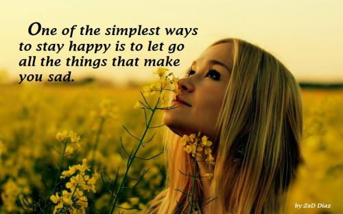One of the simplest ways to stay happy is to let go all the things that make you sad.
